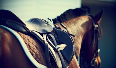 Cours d'équitation pour adulte handicapé